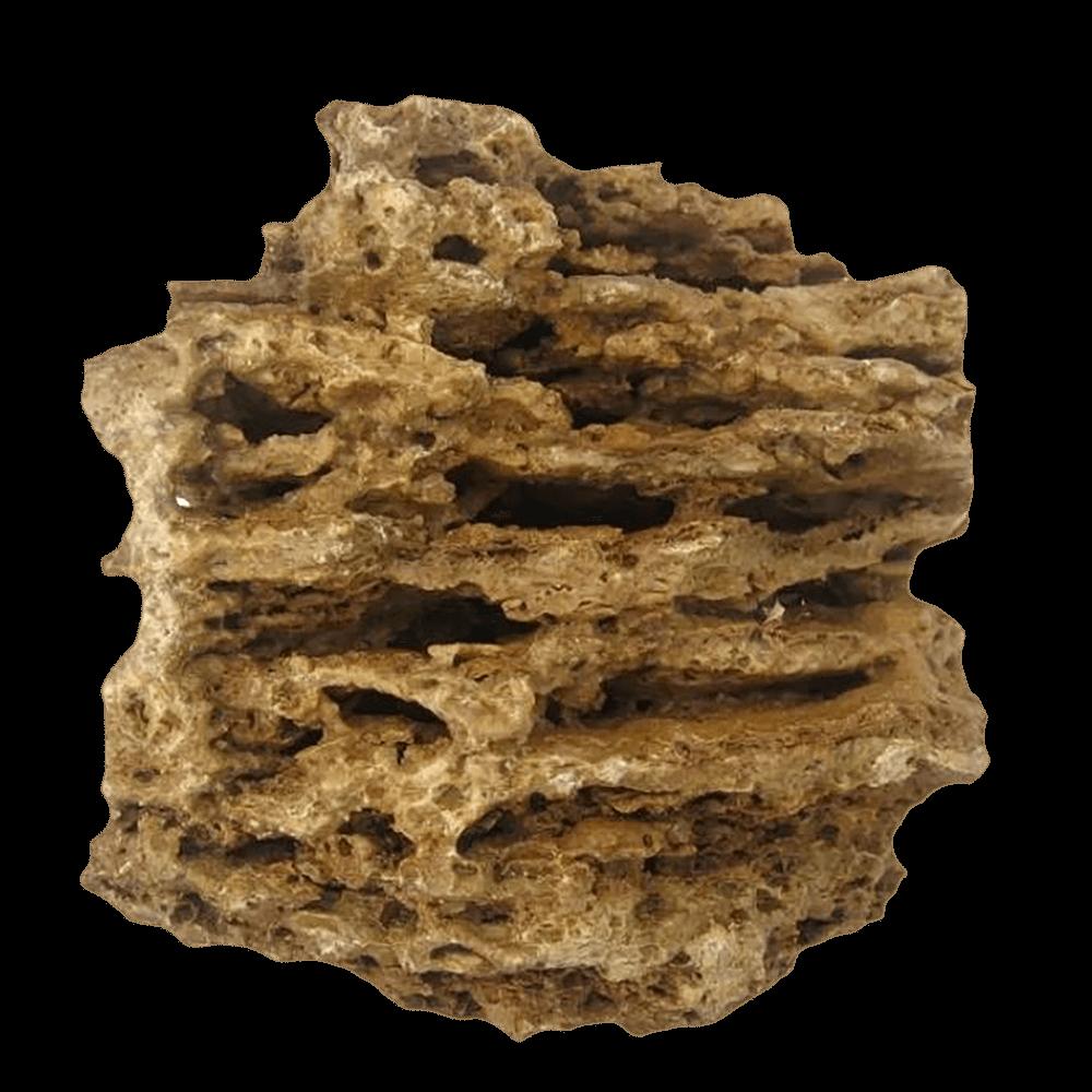 BARBUS Камень Песчаник пещеристый жёлтый (Миотис)