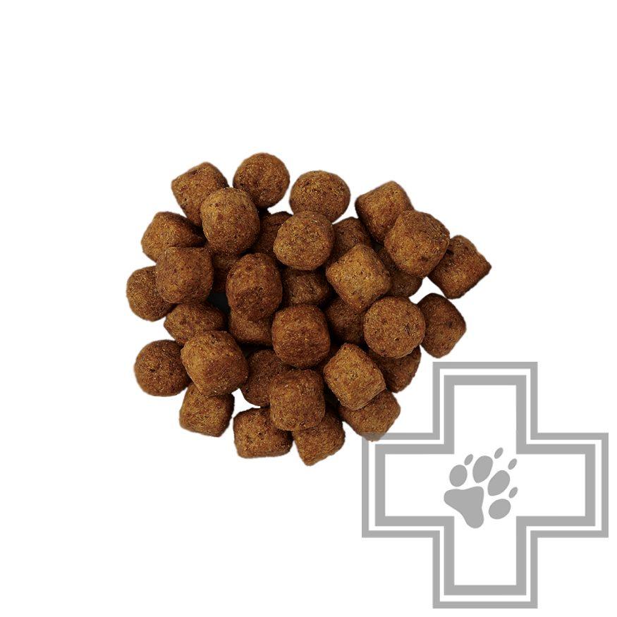 Hill's PD j/d Корм-диета для поддержания здоровья суставов собак