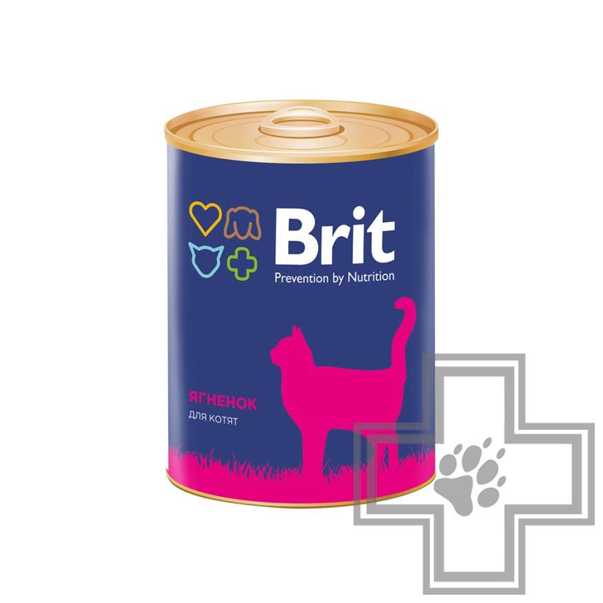 Brit Консервы для котят, паштет с ягненком