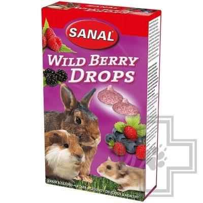 SANAL Wild Berry Drops дропсы с лесными ягодами для грызунов