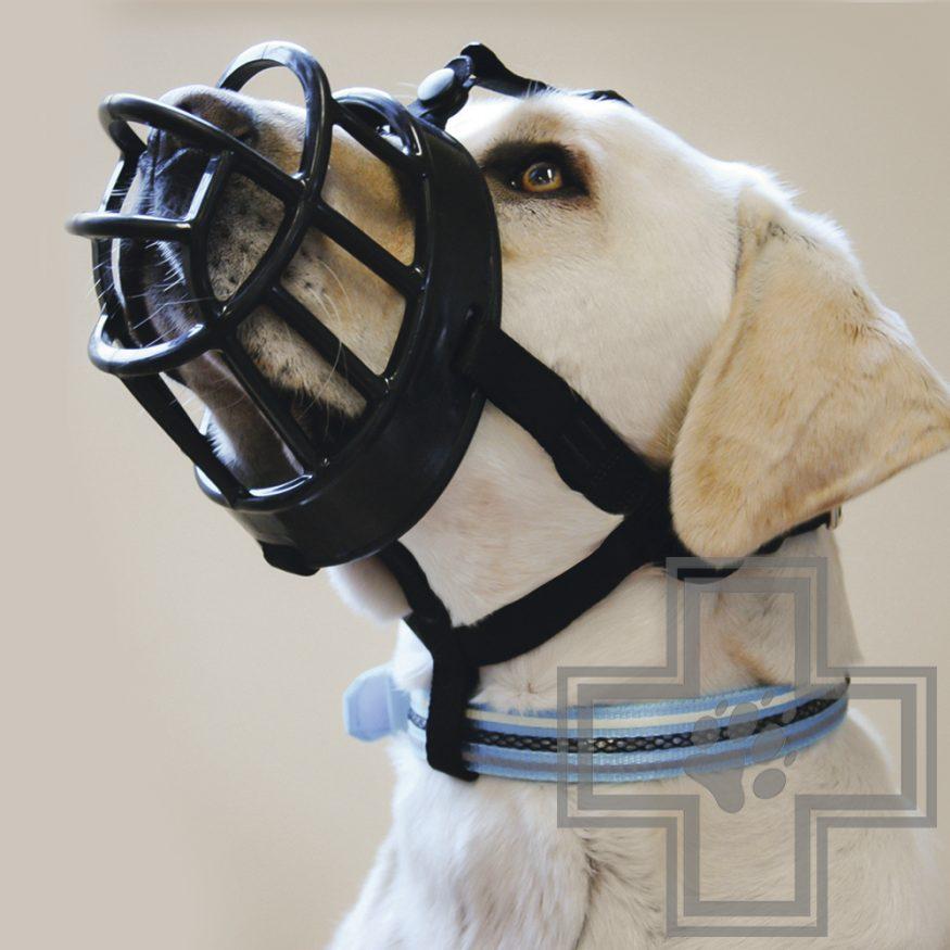 Beeztees Намордник для собак черный, размер 6