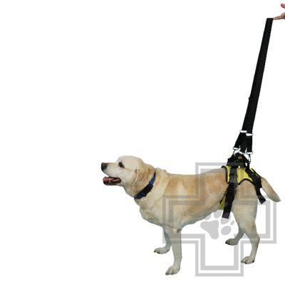 VEDA Задняя поддержка для собак